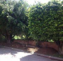 Foto de terreno habitacional en venta en , las fincas, jiutepec, morelos, 1730658 no 01