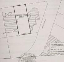 Foto de terreno habitacional en venta en  , las fincas, jiutepec, morelos, 4022554 No. 01