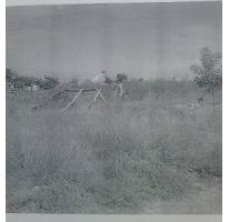 Foto de terreno habitacional en venta en  , las malvinas, ahome, sinaloa, 1716848 No. 01