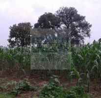 Foto de terreno habitacional en venta en las palmas o encino , la palma tenango, tenango del aire, méxico, 4004399 No. 02