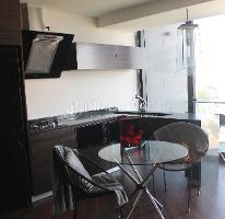Foto de departamento en renta en lateral sur , san bernardino tlaxcalancingo, san andrés cholula, puebla, 4645639 No. 02