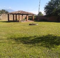 Foto de terreno habitacional en venta en leona vicario 10 , ahualulco de mercado centro, ahualulco de mercado, jalisco, 3195066 No. 01
