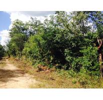 Foto de terreno habitacional en venta en  , leona vicario, benito juárez, quintana roo, 2614527 No. 01
