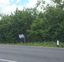 Foto de terreno comercial en venta en  , leona vicario, othón p. blanco, quintana roo, 2613681 No. 01
