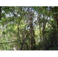 Foto de terreno habitacional en venta en levante 5, las brisas 1, acapulco de juárez, guerrero, 2687395 No. 03