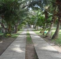 Foto de terreno habitacional en venta en  , lindavista, pueblo viejo, veracruz de ignacio de la llave, 2247740 No. 01