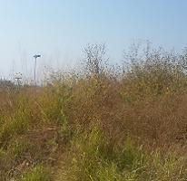 Foto de terreno habitacional en venta en  , lomas de cocoyoc, atlatlahucan, morelos, 4247138 No. 04