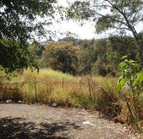 Foto de terreno habitacional en venta en, lomas de cuernavaca, temixco, morelos, 1725408 no 01