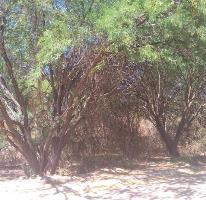 Foto de terreno habitacional en venta en  , lomas de san diego, tlajomulco de zúñiga, jalisco, 3087702 No. 01