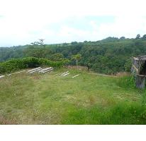 Foto de terreno habitacional en venta en  , lomas de tetela, cuernavaca, morelos, 2613392 No. 01