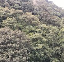 Foto de departamento en renta en  , lomas de vista hermosa, cuajimalpa de morelos, distrito federal, 0 No. 01