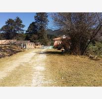 Foto de terreno habitacional en venta en  , los alcanfores, san cristóbal de las casas, chiapas, 1783332 No. 01