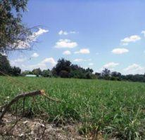 Foto de terreno habitacional en venta en, los amates, cuautla, morelos, 1574506 no 01