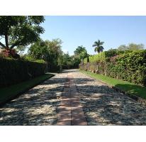 Foto de terreno habitacional en venta en, los apantles, jiutepec, morelos, 1725476 no 01