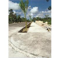 Foto de terreno habitacional en venta en  , los arrecifes, solidaridad, quintana roo, 2612234 No. 01
