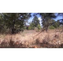 Foto de terreno habitacional en venta en  , los espinos, tapalpa, jalisco, 2636043 No. 01