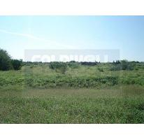 Foto de terreno comercial en venta en  , los laureles, reynosa, tamaulipas, 2720487 No. 01