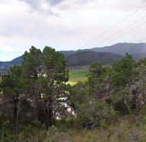 Foto de terreno habitacional en venta en  , los lirios, arteaga, coahuila de zaragoza, 3949018 No. 01