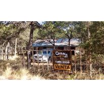 Foto de rancho en venta en  , los llanos, arteaga, coahuila de zaragoza, 2719820 No. 01