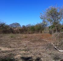 Foto de terreno habitacional en venta en los naranjos , el tuito, cabo corrientes, jalisco, 3119873 No. 01