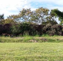 Foto de terreno habitacional en venta en  , los pinos jiutepec, jiutepec, morelos, 2630536 No. 01