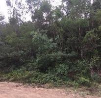 Foto de terreno habitacional en venta en  , los sabinos, allende, nuevo león, 4225193 No. 02