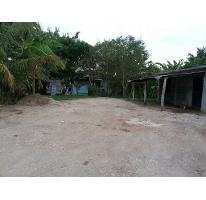 Foto de casa en venta en luis henggler 0, piloto, gonzález, tamaulipas, 2651549 No. 01