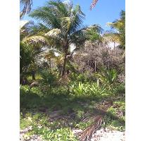 Foto de terreno habitacional en venta en, mahahual, othón p blanco, quintana roo, 1863034 no 01