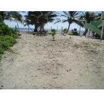 Foto de terreno habitacional en venta en  , mahahual, othón p. blanco, quintana roo, 1930468 No. 01