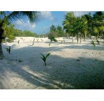 Foto de terreno habitacional en venta en  , mahahual, othón p. blanco, quintana roo, 2705621 No. 01