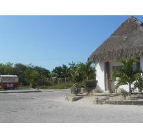 Foto de terreno habitacional en venta en  , mahahual, othón p. blanco, quintana roo, 2728658 No. 01