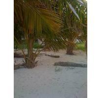 Foto de terreno habitacional en venta en  , mahahual, othón p. blanco, quintana roo, 2733882 No. 01