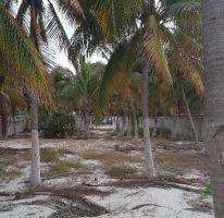 Foto de terreno habitacional en venta en manzana 001 545, isla aguada, carmen, campeche, 1721800 no 01