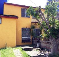 Foto de casa en venta en maples 34, 3 de mayo, xochitepec, morelos, 2404002 no 01