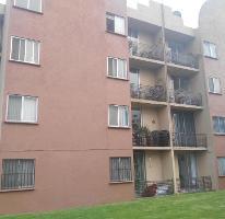 Foto de departamento en renta en  , maravillas, cuernavaca, morelos, 3694117 No. 01