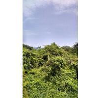 Foto de terreno habitacional en venta en  , marina brisas, acapulco de juárez, guerrero, 1704372 No. 01