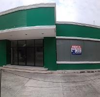 Foto de local en renta en  , merida centro, mérida, yucatán, 3291284 No. 01