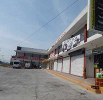 Foto de local en renta en  , mexicaltzingo, mexicaltzingo, méxico, 3518790 No. 01