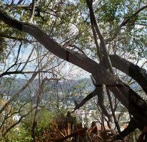 Foto de terreno habitacional en venta en mexico 98, altamira, acapulco de juárez, guerrero, 4274283 No. 01
