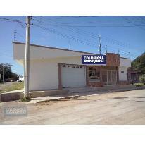 Foto de casa en venta en  , miguel hidalgo, culiacán, sinaloa, 1878692 No. 01