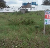 Foto de terreno habitacional en venta en  , miramar, ciudad madero, tamaulipas, 2604288 No. 01
