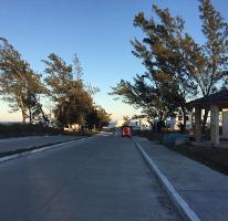 Foto de terreno habitacional en venta en  , miramar, ciudad madero, tamaulipas, 2623854 No. 01