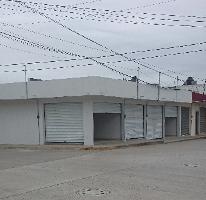 Foto de local en renta en  , monte alto, altamira, tamaulipas, 2612391 No. 01