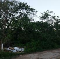Foto de terreno habitacional en venta en  , montebello, mérida, yucatán, 3438896 No. 01