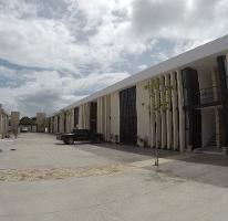 Foto de departamento en renta en  , montebello, mérida, yucatán, 4554645 No. 01