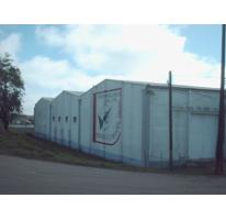 Foto de nave industrial en renta en  , moralillo, pánuco, veracruz de ignacio de la llave, 2590401 No. 01