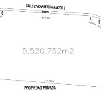 Foto de terreno comercial en venta en  , motul de carrillo puerto centro, motul, yucatán, 2593698 No. 01