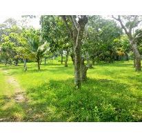 Foto de terreno habitacional en venta en  , nacajuca, nacajuca, tabasco, 2734762 No. 01