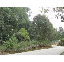 Foto de terreno habitacional en venta en predio rustico las flores, san felipe ecatepec, san cristóbal de las casas, chiapas, 374318 no 01