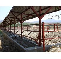 Foto de rancho en venta en tehuitla, tehuixtla, jojutla, morelos, 1751210 no 01